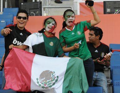 El. MŚ: Meksykanie mogą kupować bilety do Brazylii