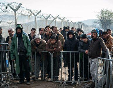 Niemcy stworzą na Bliskim Wschodzie miejsca pracy dla uchodźców