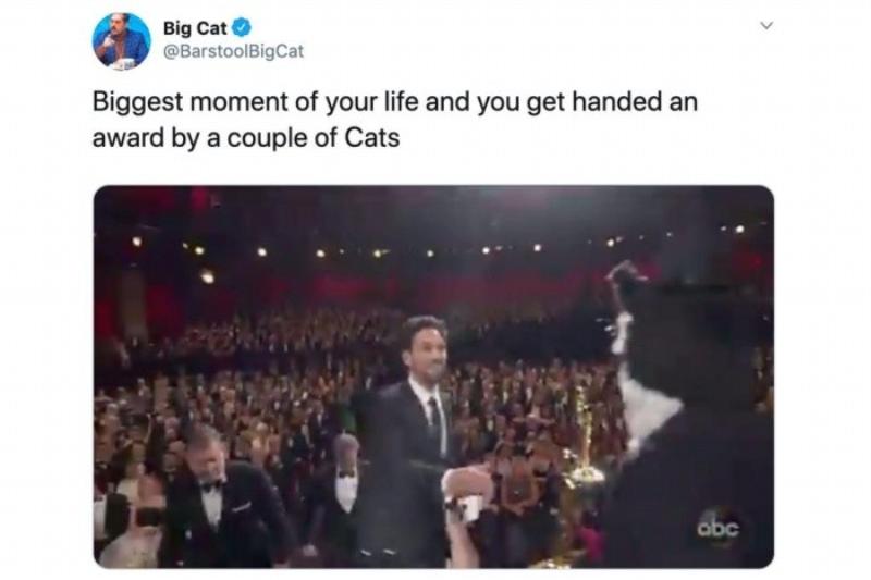 Najważniejszy moment twojego życia i nagrodę wręczają ci koty