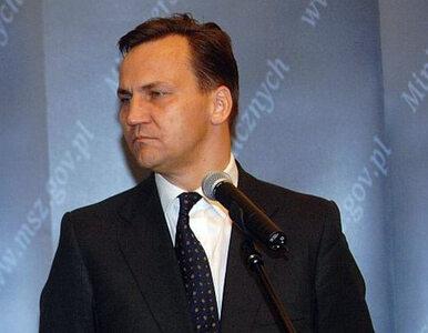 Polscy inspektorzy lecą do Syrii