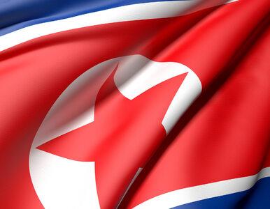 Amerykański student zatrzymany w Korei Północnej: Błagam o przebaczenie