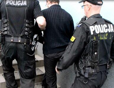 Policja zatrzymała podejrzanego o pedofilię. Pracował jako wychowawca w...