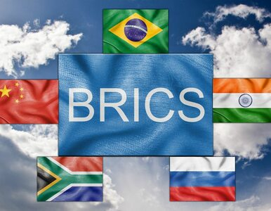 Kraje BRICS planują stworzenie alternatywy dla Banku Światowego