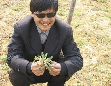 Chiny: co dalej z niewidomym dysydentem? Waszyngton negocjuje z Pekinem