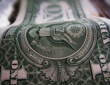 Dolar przegoni euro?
